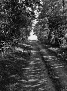 chemin seul